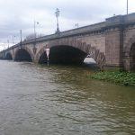 ハーフターム最終日は、川沿いぶらぶらお散歩