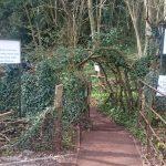 Puzzlewoodという神秘的な森へ