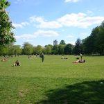 Ravenscourt Parkで、子どもと遊ぶ